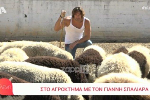 σεξ με πρόβατα βίντεοτο σεξ vid