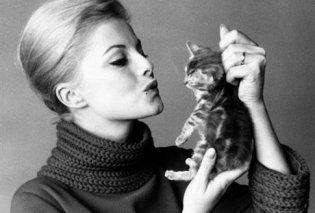 Πέθανε η βασίλισσα του ιταλικού κινηματογράφου Βίρνα Λίζι - τo αφιέρωμα του Εirinika, υπόκλιση - αντίο σε μια υπέροχη κυρία της 7ης τέχνης! - Κυρίως Φωτογραφία - Gallery - Video