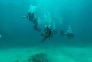 Ταξίδι μακρινό ως την Τζαμάϊκα: ο Άκης Πετρετζίκης κάνει υποβρύχιο ψάρεμα στο εξωτικό νησί – φωτό - Κυρίως Φωτογραφία - Gallery - Video