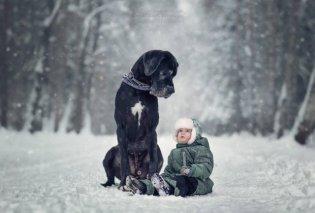 Αξιολάτρευτα μωράκια με πιστούς φύλακες τους σκύλους τους  βολτάρουν & χαρίζουν χειμωνιάτικα χαμόγελα (ΦΩΤΟ) - Κυρίως Φωτογραφία - Gallery - Video