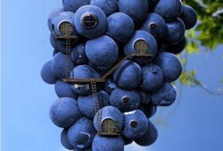 Φώτο: Απίθανες μικρογραφίες... μεταμορφώνονται σε σπίτια από φρούτα ή δέντρα!  - Κυρίως Φωτογραφία - Gallery - Video