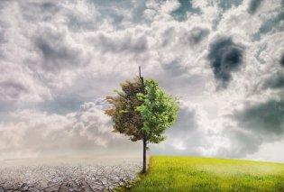 """""""Πανάκεια"""": Η πανελλαδική ερευνητική υποδομή για τη μελέτη της κλιματικής αλλαγής από το πανεπιστήμιο Κρήτης - Κυρίως Φωτογραφία - Gallery - Video"""