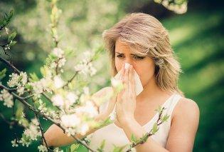 Πως θα αντιμετωπίσουμε τις αλλεργίες της Άνοιξης; Δείτε 4 απλά tips που βοηθούν! - Κυρίως Φωτογραφία - Gallery - Video
