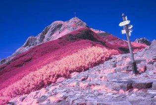 Όταν τα χρώματα & οι ομορφιές της φύσης δεν χρειάζονται λόγια - Κλικς που μας φτιάχνουν τη μέρα (ΦΩΤΟ) - Κυρίως Φωτογραφία - Gallery - Video