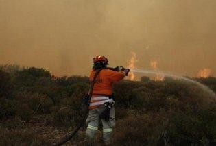 Οι ανακοινώσεις των ομάδων για τις πυρκαγιές - Τα έσοδα του ΠΑΟΚ - Βασιλεία στους πληγέντες - Κυρίως Φωτογραφία - Gallery - Video