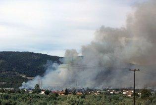 Ο Όμιλος ΕΛΛΗΝΙΚΑ ΠΕΤΡΕΛΑΙΑ στηρίζει τους πληγέντες από τις πυρκαγιές - Κυρίως Φωτογραφία - Gallery - Video