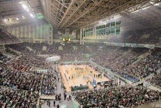 Παναθηναϊκός: Το τμήμα μπάσκετ έκλεισε τα 100 και το γιορτάζει! - Το νέο σήμα της ομάδας (Φωτό) - Κυρίως Φωτογραφία - Gallery - Video