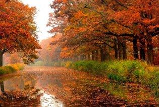 Η αρχή της χρονιάς είναι το φθινόπωρο - Δείτε γιατί - Κυρίως Φωτογραφία - Gallery - Video