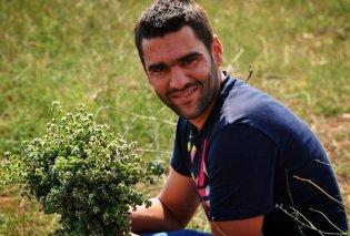 Made in Greece οι καρποί της «Υγαία»: Μούρα & καρύδι, θησαυροί της καλής υγείας, από ένα οικογενειακό αγρόκτημα στην κορυφή του Πάρνωνα - Κυρίως Φωτογραφία - Gallery - Video
