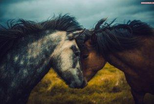 Όταν ο φακός τραβάει μαγικές εικόνες από παραμυθένια μέρη της Ισλανδίας - Φώτο   - Κυρίως Φωτογραφία - Gallery - Video