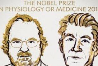 Νόμπελ Ιατρικής για τους Άλισον - Χόνζο: Αντιμετωπίζουν με ανοσοθεραπεία τον επιθετικό καρκίνο - Κυρίως Φωτογραφία - Gallery - Video