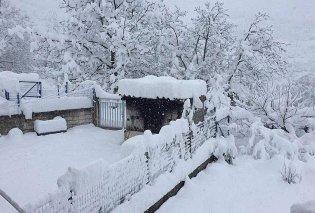 Έρχεται χειμώνας: Πού θα χιονίσει και πότε - Αναλυτική πρόβλεψη από τον μετεωρολόγο Γιάννη Καλλιάνο μέχρι τη Δευτέρα (Φωτό) - Κυρίως Φωτογραφία - Gallery - Video