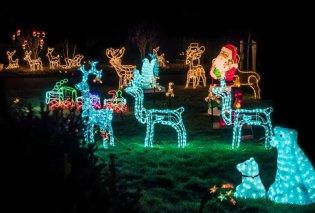 Φέρτε τα Χριστούγεννα στον κήπο σας – Υπέροχες ιδέες για να στολίσετε - Κυρίως Φωτογραφία - Gallery - Video