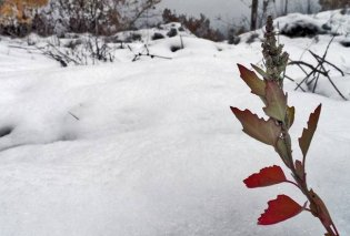 Καιρός: Βροχές, καταιγίδες ακόμα και χιονοπτώσεις - Άνεμοι έως 8 μποφόρ (Βίντεο) - Κυρίως Φωτογραφία - Gallery - Video