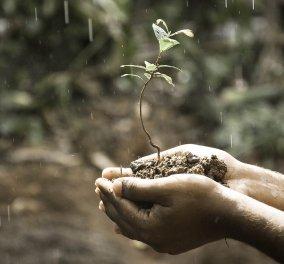 Καιρός: Αισθητή πτώση της θερμοκρασίας - Που θα σημειωθούν βροχές  - Κυρίως Φωτογραφία - Gallery - Video