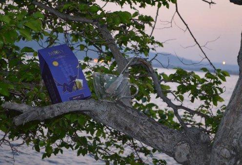 Made in Greece τα προϊόντα Μώλυ: Τσάι βιολογικών βοτάνων με συνταγή από τον Όμηρο - Κυρίως Φωτογραφία - Gallery - Video