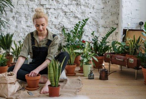 13 τρόποι - έκπληξη για να γίνετε μικροί κηπουροί: Απλοί, πανεύκολοι, γρήγοροι & αποτελεσματικοί (βίντεο) - Κυρίως Φωτογραφία - Gallery - Video