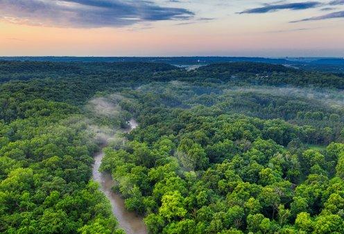 Εκπληκτικό: Ο χάρτης με τους ήχους των δασών του πλανήτη - Πατάτε και ακούτε τον Αμαζόνιο, το δάσος του Κονγκό στην Αφρική, το Valvidian  στη Χιλή - Κυρίως Φωτογραφία - Gallery - Video