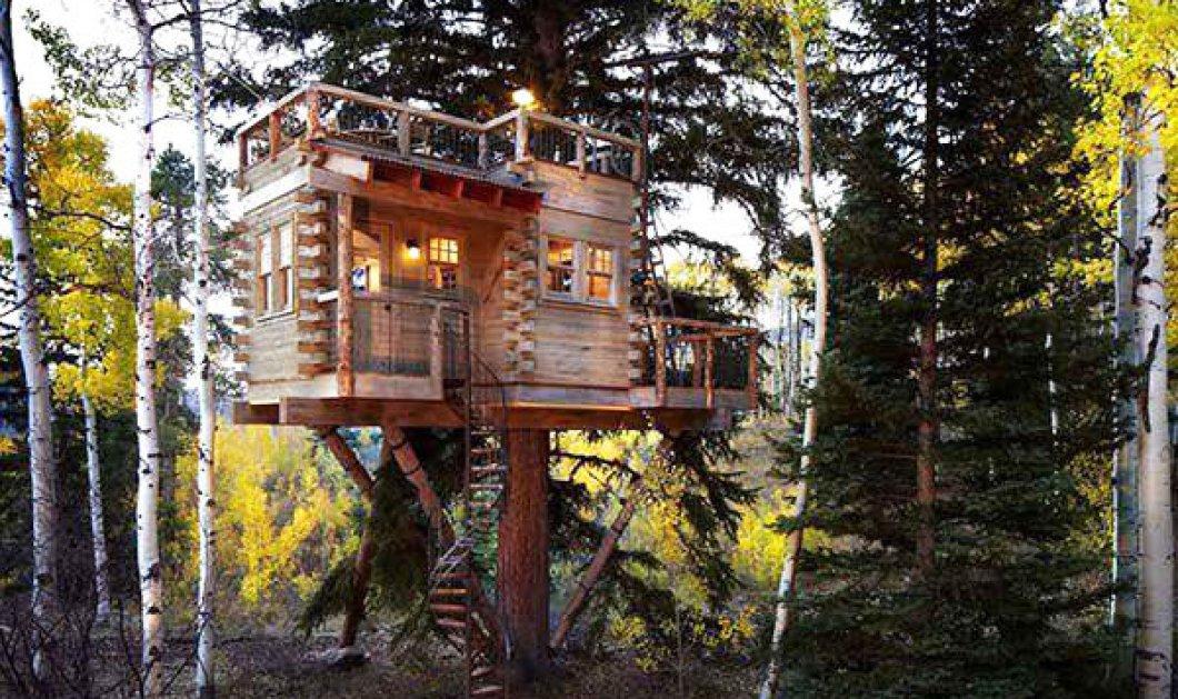 Happy tree houses: Αυτά είναι τα ομορφότερα δεντρόσπιτα που έχετε δει! - Κυρίως Φωτογραφία - Gallery - Video