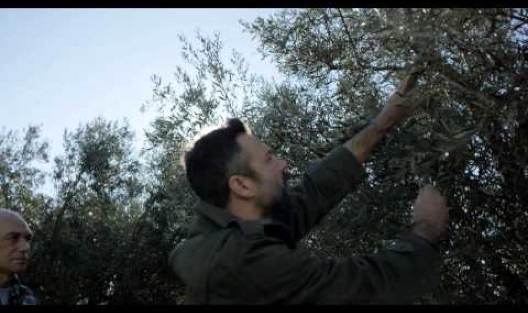 «ΕΛΠΙΖΩ»: Αυτό είναι το νέο προεκλογικό σποτ του ΣΥΡΙΖΑ που αφορά τους αγρότες! (βίντεο) - Κυρίως Φωτογραφία - Gallery - Video