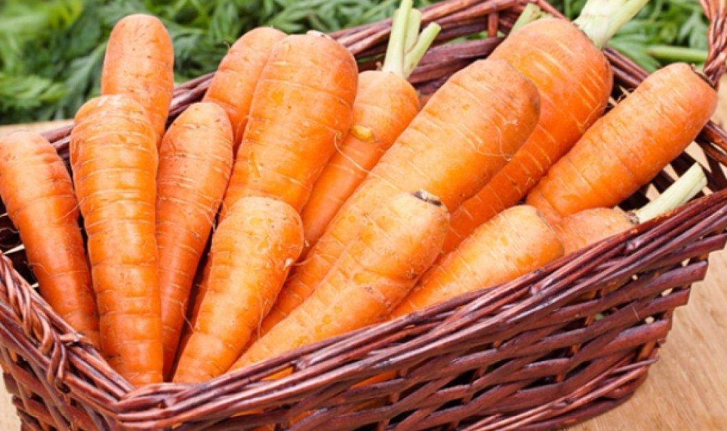 5 λαχταριστά πιάτα με καρότο: Αφιέρωμα στο αγαπημένο λαχανικό! - Κυρίως Φωτογραφία - Gallery - Video