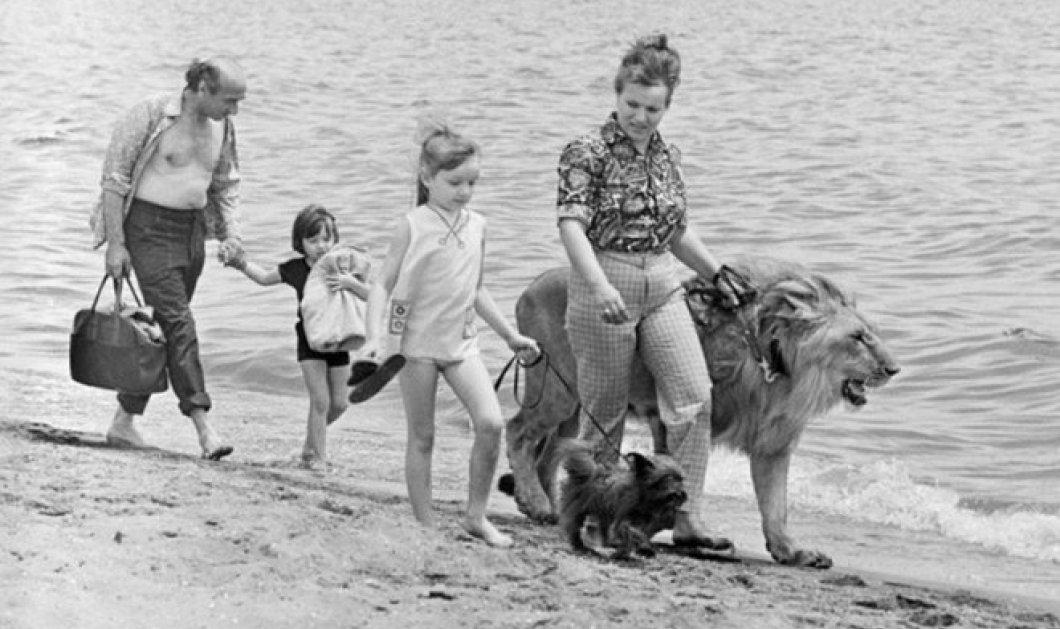 Συγκινητικό story of the day: H οικογένεια που έζησε και μεγάλωσε με δύο λιοντάρια για... κατοικίδια! - Κυρίως Φωτογραφία - Gallery - Video
