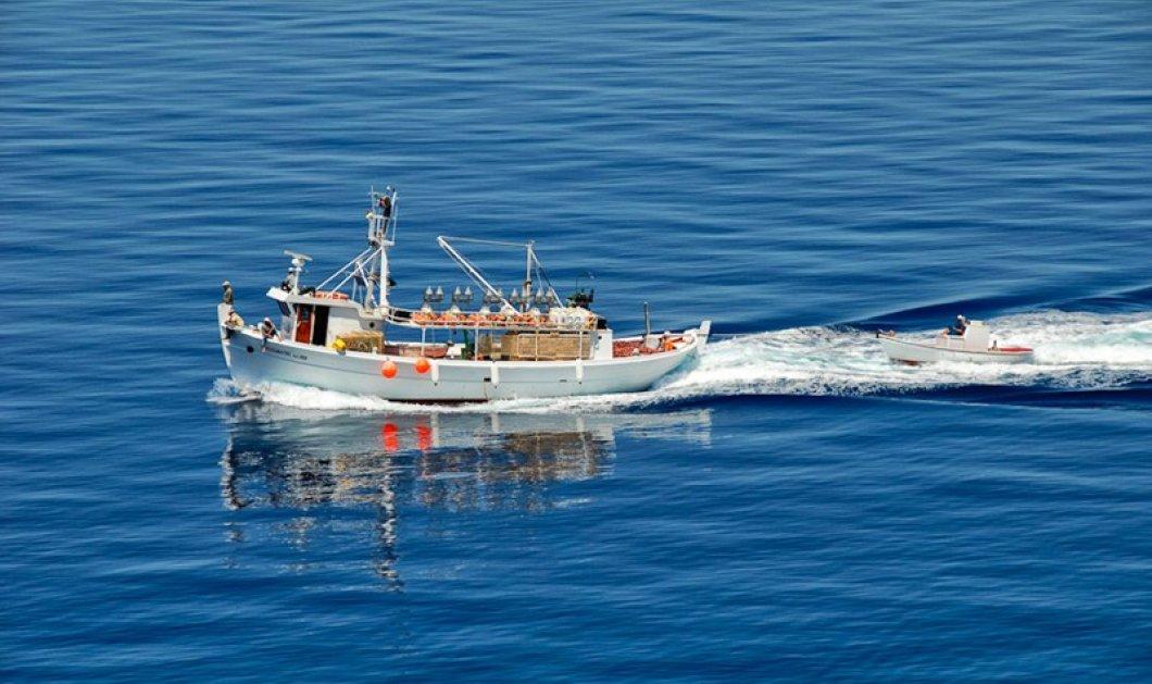 Τραγωδία τα ξημερώματα στην Ερμιόνη - Τρεις νεκροί από τη βύθιση αλιευτικού σκάφους! - Κυρίως Φωτογραφία - Gallery - Video