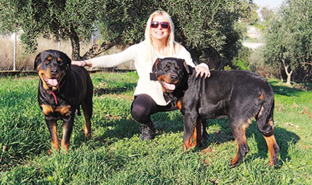 Στο νοσοκομείο η Στέλλα Μπεζαντάκου με 70 ράμματα - της επιτέθηκαν 4 σκυλιά ροτβάιλερ! - Κυρίως Φωτογραφία - Gallery - Video