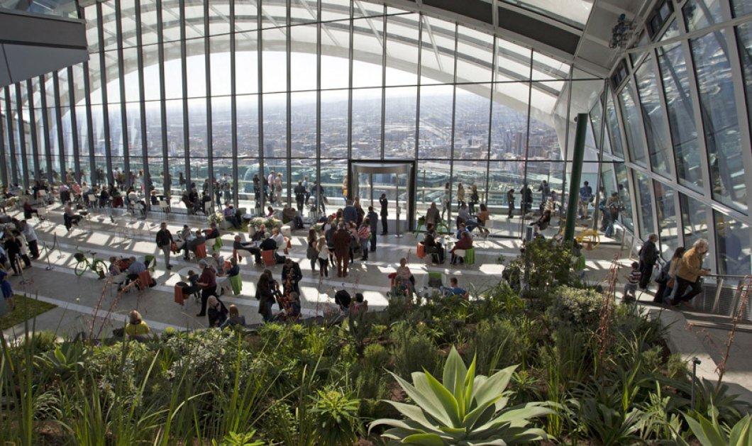 Αυτός ο κήπος είναι ιπτάμενος! Με θέα όλο το Λονδίνο έφτιαξαν βεράντα με φυτά στην ταράτσα ουρανοξύστη! - Κυρίως Φωτογραφία - Gallery - Video