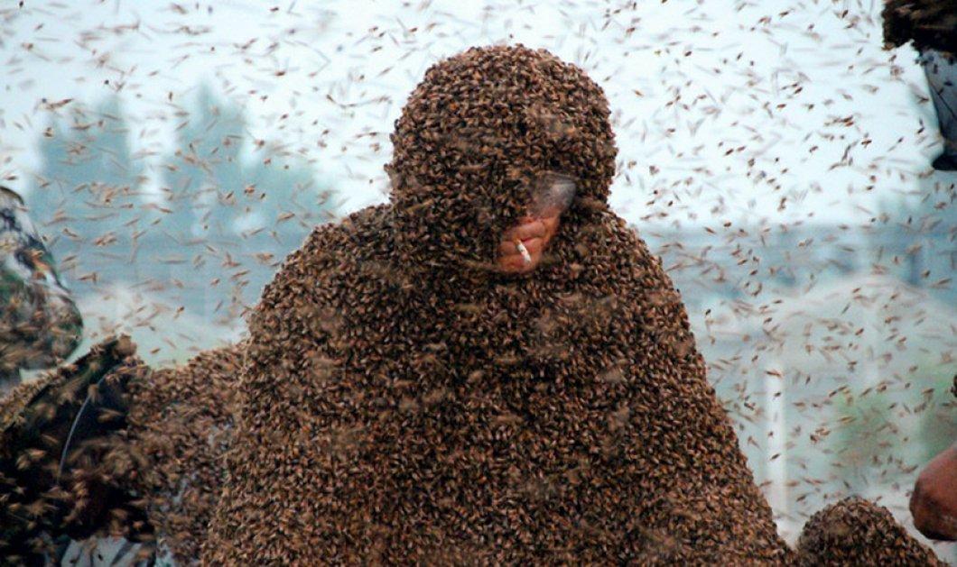 Bάλθηκε να τρελάνει τον κόσμο ο Γκάο Μπινγκούο - Καπνίζει με 1,1 εκ. μέλισσες πάνω στο σώμα του & σπάει τα ρεκόρ Γκίνες - Κυρίως Φωτογραφία - Gallery - Video