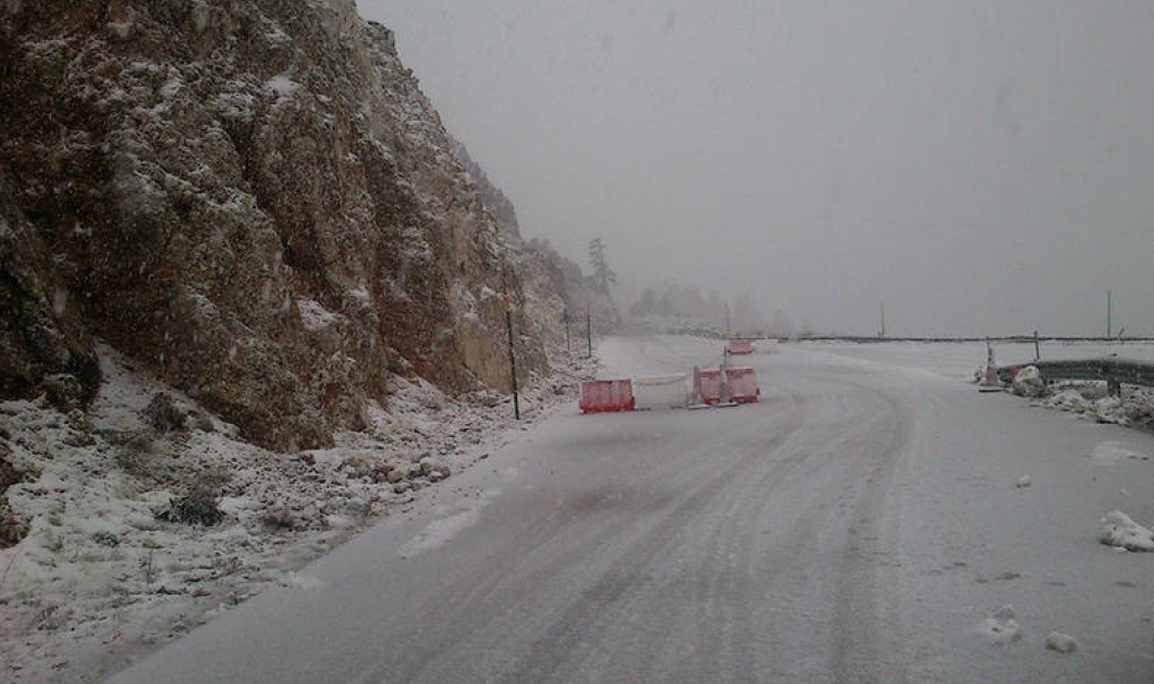 Good News: «Άσπρισαν» ο Παρνασσός και το Βελούχι! Μαγευτικές φωτό με... άφθονο χιόνι! - Κυρίως Φωτογραφία - Gallery - Video