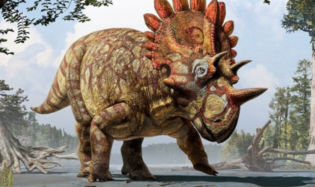 Ηellboy: Ήρθε στο φως ο διαβολοδεινόσαυρος, ο πιο τρομακτικός όλων, μετά από 68 εκ χρόνια - Κυρίως Φωτογραφία - Gallery - Video