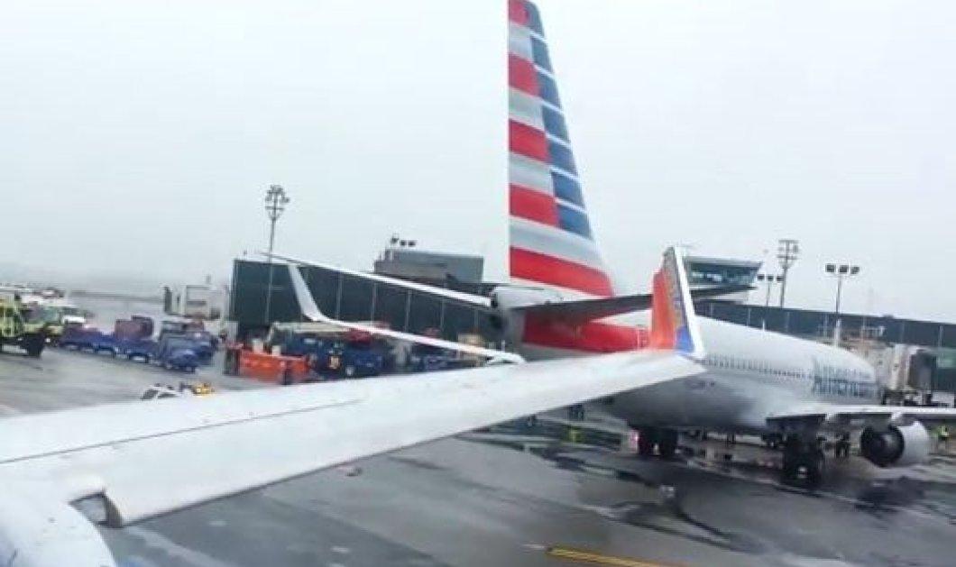 ΗΠΑ: Συγκρούστηκαν δύο αεροσκάφη στο αεροδρόμιο της Ν.Υόρκης - Σε κατάσταση πανικού οι επιβάτες! - Κυρίως Φωτογραφία - Gallery - Video