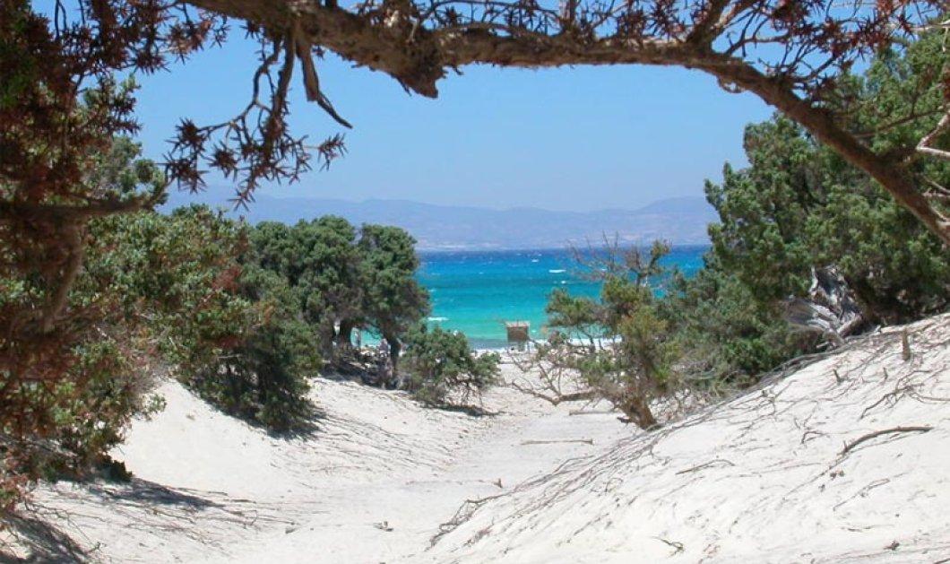 Βίντεο - Με υποβρύχιο γύρισμα  στο παρθένο νησί Χρυσή της Κρήτης  η επιτομή του ελληνικού καλοκαιριού  - Κυρίως Φωτογραφία - Gallery - Video