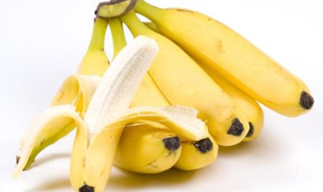 Ήθελε να φάει μια μπανάνα, αλλά κάτι άρχισε να κουνιέται κάτω από τη φλούδα!  - Κυρίως Φωτογραφία - Gallery - Video