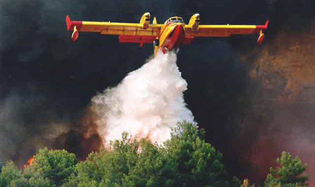 Αναγκαστική προσγείωση 2 καναντέρ στην Λακωνία- Νέα πυρκαγιά στην Αρτάκη - Κυρίως Φωτογραφία - Gallery - Video