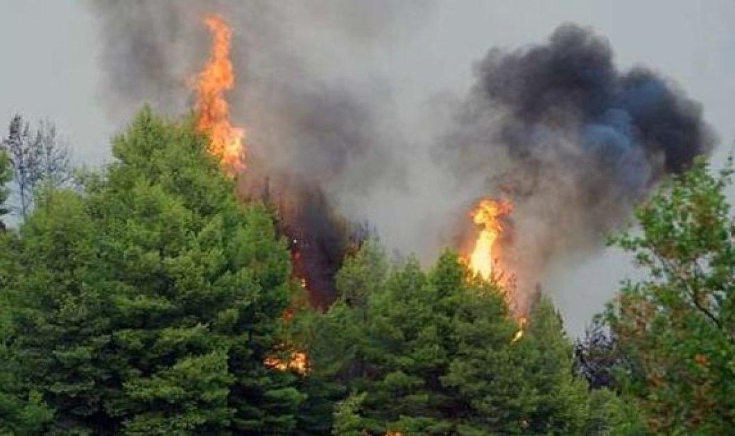 Ο πρωθυπουργός στο κέντρο επιχειρήσεων για τις πυρκαγιές σε Υμηττό και Λακωνία – Αναγκαστική προσγείωση καναντέρ - Κυρίως Φωτογραφία - Gallery - Video