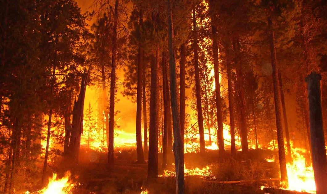 Μόνο τυχαία δεν ήταν η αποψινή φωτιά στη Ρόδο - Νέα βίντεο και φωτογραφίες   - Κυρίως Φωτογραφία - Gallery - Video