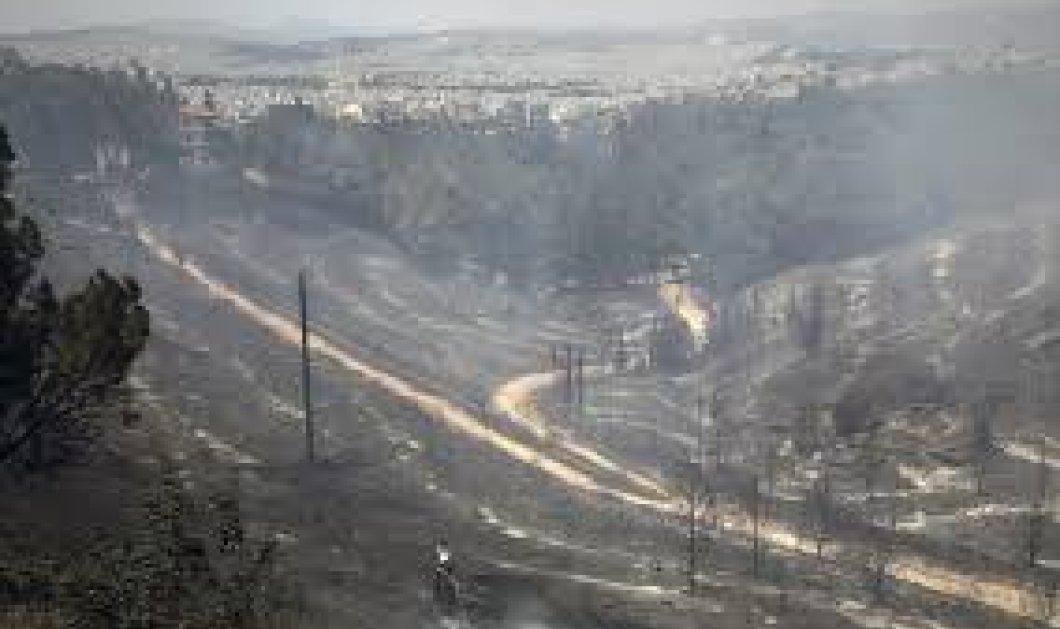 Η επομένη μέρα στον Υμηττό – Η μεγάλη καταστροφή που προκάλεσε η πυρκαγιά - Κυρίως Φωτογραφία - Gallery - Video