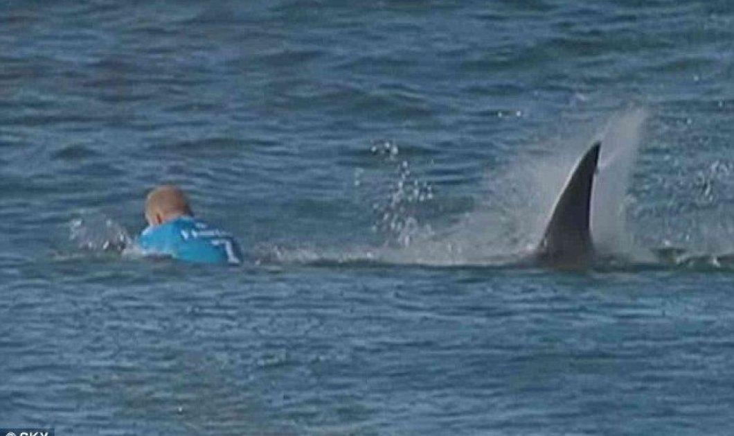 Βίντεο – Η επίθεση ενός καρχαρία σε ένα σέρφερ στην Ν. Αφρική - Κυρίως Φωτογραφία - Gallery - Video