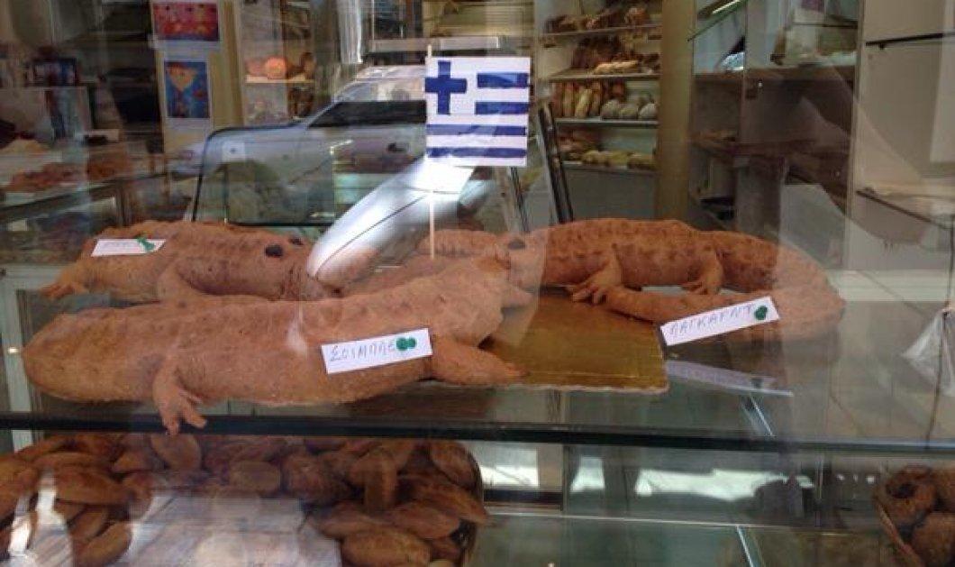 Ψωμί σε σχήμα κροκόδειλου -Λέγεται Σόιμπλε, Λαγκάρντ, Ντράγκι [εικόνα]  - Κυρίως Φωτογραφία - Gallery - Video
