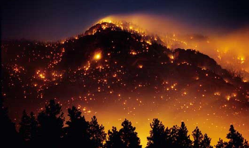 74 πυρκαγιές από την Παρασκευή - Ποια μέτωπα είναι σε εξέλιξη;  - Κυρίως Φωτογραφία - Gallery - Video