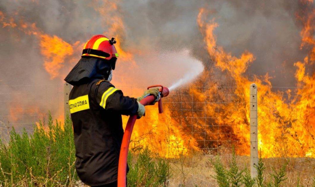 Μεγάλη φωτιά στο Ξυλόκαστρο: 4 καναντέρ, 92 πυροσβέστες, 26 οχήματα και ένα ελικόπτερο επιχειρούν για την κατάσβεση   - Κυρίως Φωτογραφία - Gallery - Video