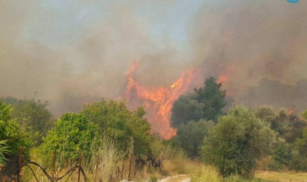 Μεγάλη φωτιά στη Ρόδο που ξέσπασε από της 14:00 μ.μ. - Φώτο  - Κυρίως Φωτογραφία - Gallery - Video
