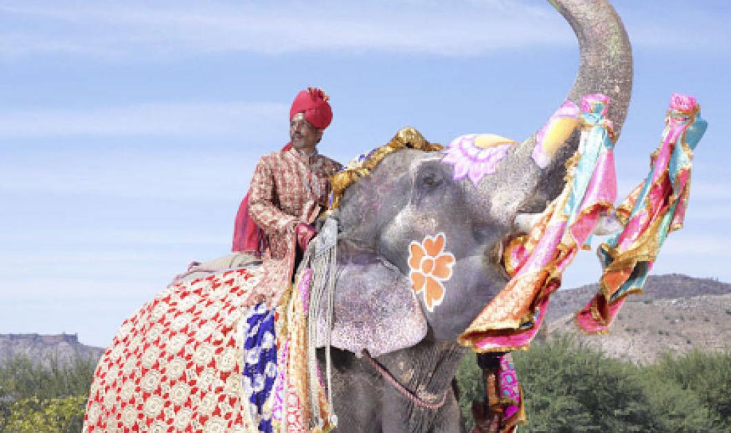 Πάμε Τζαϊπούρ καβάλα σαν μαχαραγιάδες σε στολισμένους  ελέφαντες με μετάξια & μπιζού   - Κυρίως Φωτογραφία - Gallery - Video