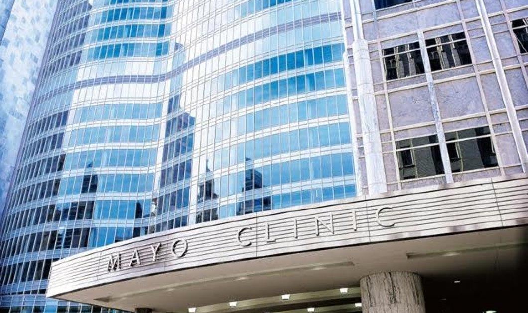 Made in Greece: Ο Πάνος Αναστασιάδης κορυφαίος ερευνητής κατα του καρκίνου στη Mayo clinic - Κυρίως Φωτογραφία - Gallery - Video