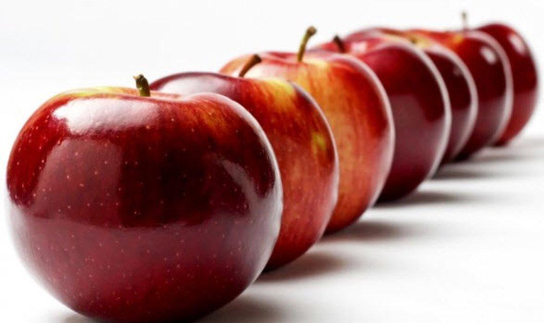 Αυτές είναι οι 5 φθινοπωρινές τροφές για κάψιμο λίπους: Γλυκοπατάτες, κανέλα & αχλάδια οι πιστοί μας σύμμαχοι - Κυρίως Φωτογραφία - Gallery - Video