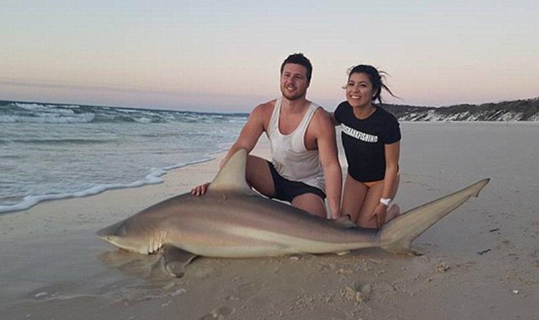 Κυνηγός καρχαριών έπιασε τρεις διαφορετικούς μέσα σε μία εβδομάδα- Όλοι αφέθηκαν στην θάλασσα  - Κυρίως Φωτογραφία - Gallery - Video