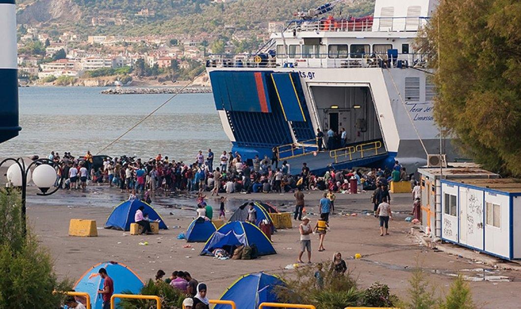 Δείτε το βίντεο της Telegraph για το μεταναστευτικό στην Ελλάδα - Γίναμε ρεντίκολο   - Κυρίως Φωτογραφία - Gallery - Video
