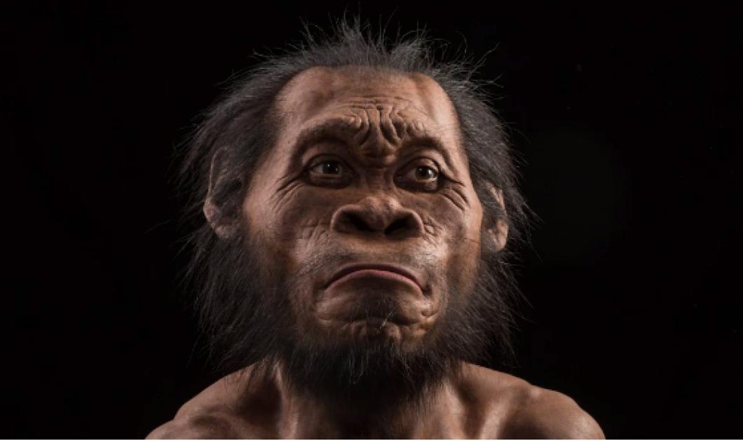 Προσοχή! Παγκόσμια ανακάλυψη:  Αυτό το πρόσωπο - συγγενής του ανθρώπου θα αλλάξει την ιστορία της ανθρωπότητας - Κυρίως Φωτογραφία - Gallery - Video